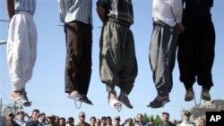 آرشیف: تعداد افرادیکه در ایران به دار آویخته شده بودند.