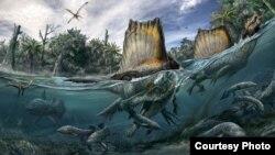 El único dinosaurio que se adaptaba a la vida en el agua vivió en el Norte de África.