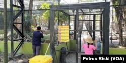 Kandang besar untuk burung atau aviary aves yang akan direvitalisasi Kebun Binatang Surabaya setelah mendapat Izin Lembaga Konservasi, Surabaya, 24 Mei 2019. (Foto: Petrus Riski-VOA)