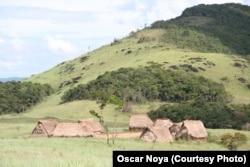 Yanomami live in small villages in a vast protected area in Venezuela. (Credit: Oscar Noya)