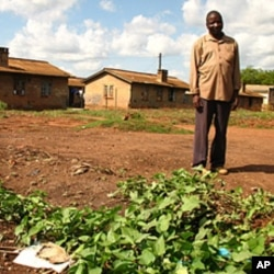 Antony Odiya, unable to access his family's land, grows sweet potatoes on a patch of dirt in Gulu, April 19, 2012. (VOA-H. Heuler)