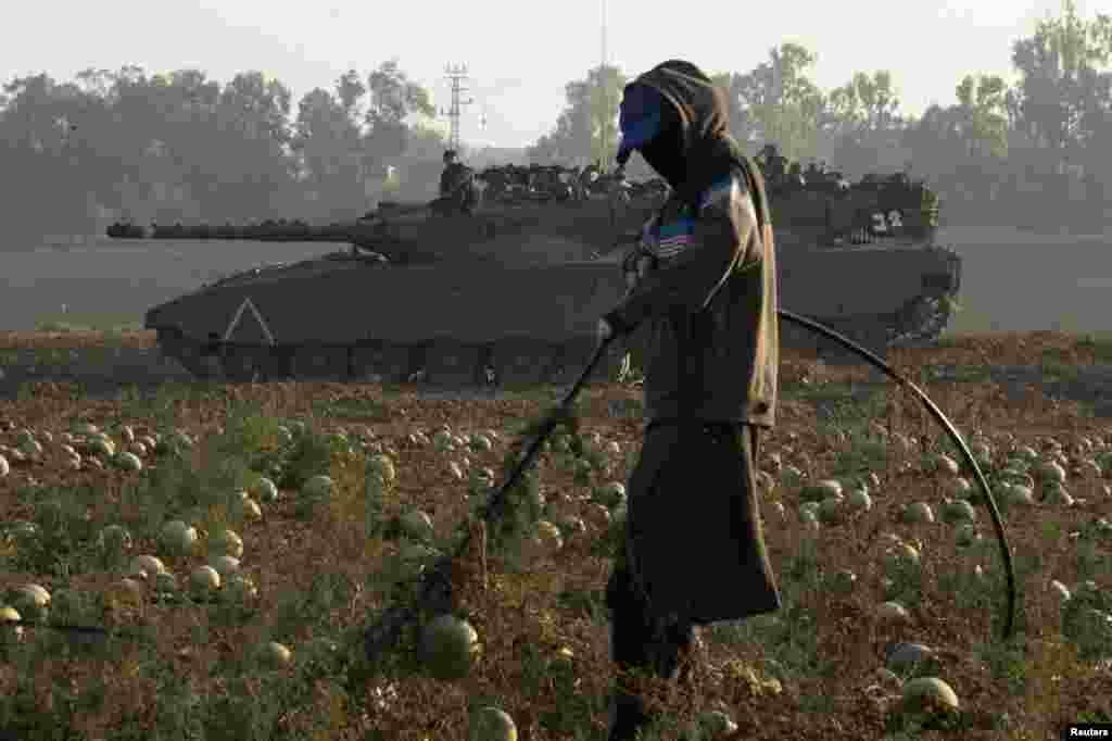 A laborer tends a watermelon field as tanks are stationed near the border with Gaza, July 30, 2014.