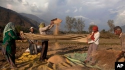 FILE - Kashmiri farmers separate grain from the chaff after harvest in Boras village, about 25 miles northeast of Srinagar, India.