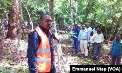 Dr Narcisse Olinga, sous-directeur des échanges extérieurs au ministère du commerce au Cameroun, le 25 mai 2017. (VOA/Emmanuel Ntap)