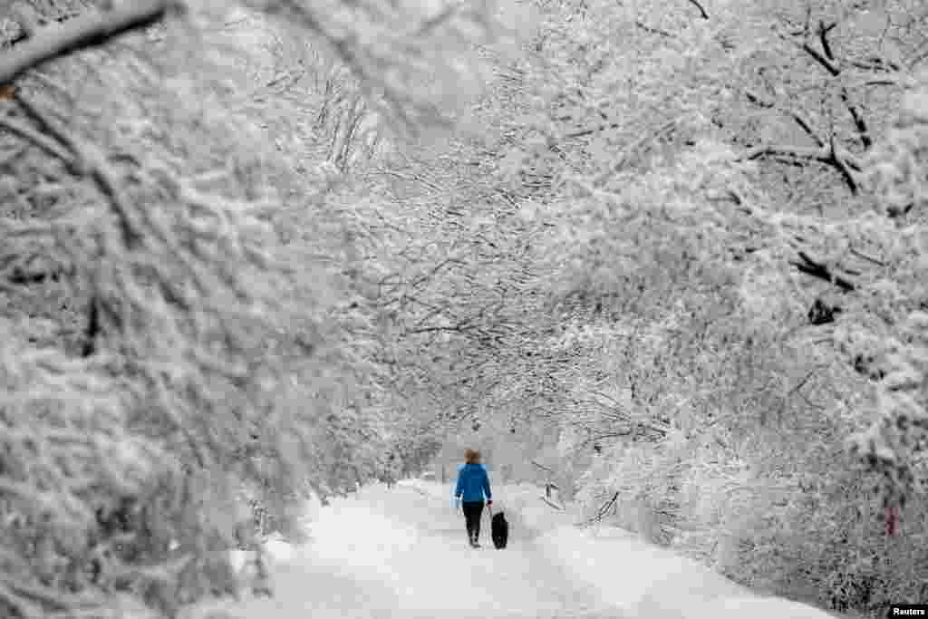 A woman walks a dog on a snow-covered path beside the Rideau Canal in Ottawa, Ontario, Canada.