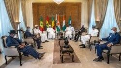 Farafina gun tilebiyan fan jamanaw nafasorosira jekulu -CEDEAO ka, bi, Tenin don laje Niamey Mali kan