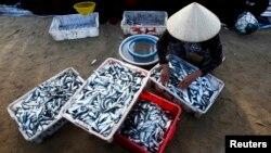 Chính quyền Việt Nam đưa ra một số khuyến cáo không nên ăn cá ở những khu vực xảy ra thảm họa.