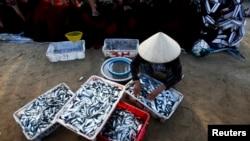 """Một ngư dân Quảng Bình cho biết hiện có tình trạng cá tôm con cái bà đánh bắt về """"không ai mua, cho cũng không ai lấy""""."""