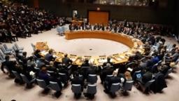 Réunion du Conseil de sécurité des Nations Unies, New York, États-Unis, le 26 janvier 2019.