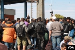 Weary people from the Middle East and Africa on the move to Europe crowd authorities in Opatovac, Croatia, for information on how to get to their next destination, Sept. 22, 2015 (VOA / H. Murdock)