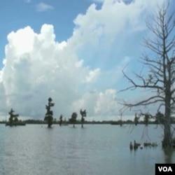 Delta Mississipija je bogato lovište riba i školjki
