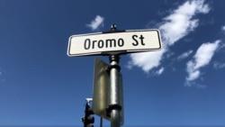 Caaltuu Sanii:MN Oromiyaa jechaa biyyatti dhageette asi geennaa ammoo xiqqoo saniimitii guddoon arge