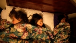 Quiz - Sleeping in Hot Rooms Bad for Brain