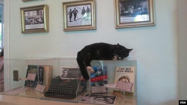 В одной из комнат дома-музея. Photo: Oleg Sulkin