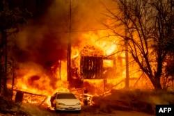 جنگلات کی آگ نے کیلی فورنیا کے ایک گاؤں گرین ول کو جلا کر راکھ کر دیا ہے۔