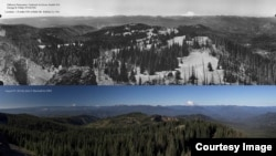 Comparison of Bald Mountain, east of Seattle, Washington, 1934 (top) and 2014 (bottom).