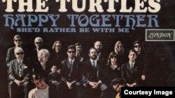 록음악 속으로 (12) Turtles