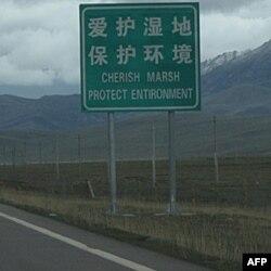 保护湿地的标语