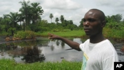 Villager shows effects of an oil spill right behind his home in Nigeria's Niger Delta region. (file photo)