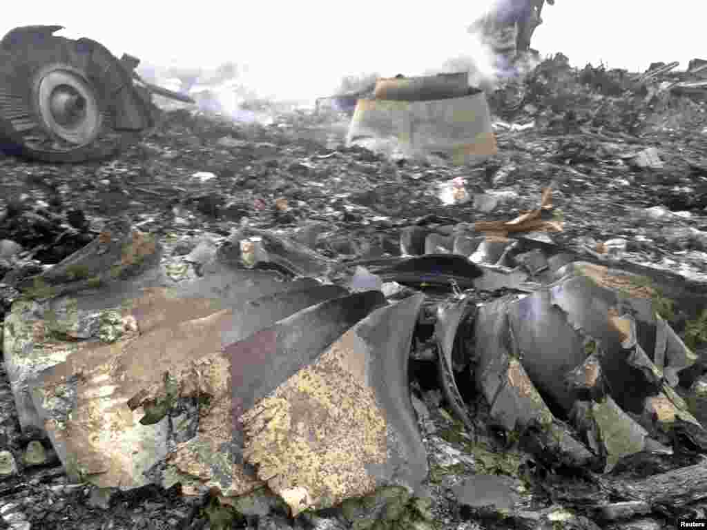 The site of a Malaysia Airlines Boeing 777 plane crash is seen at the settlement of Grabovo in the Donetsk region.