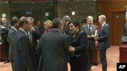 欧盟各国外长1月23日在布鲁塞尔开会