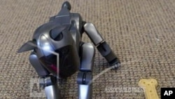 robotic_dog