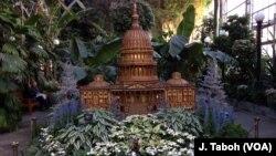 全部由植物材料制成的美国国会大厦在美国国家植物园年度假展出。