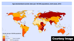 Suicide rates worldwide in 2012 according to WHO