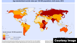FILE - Suicide rates worldwide in 2012.