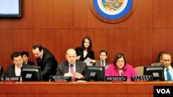 El documento presentado por el canciller salvadoreño tendrá que ser revisado y aprobado por el resto de Estados Miembros de la OEA.