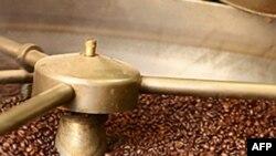Brezilya'da Kahve Üreticileri Gelecekten Umutlu