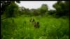 Les confessions d'ex-enfants soldats de la LRA à Cannes