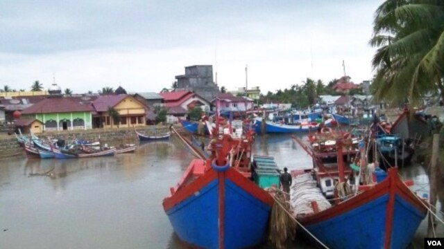 Pelabuhan Perikanan Kuala Meureudu merupakan Salah satu lokasi alternatif pembangunan Pelabuhan Ekspor Tuna dengan fasilitas modern di Pidie Jaya, Aceh.