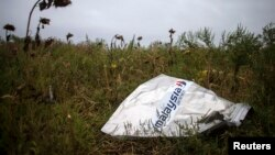 A piece of wreckage of the downed Malaysia Airlines flight MH17 is pictured near the village of Hrabove (Grabovo) in Donetsk region, eastern Ukraine, Sept. 9, 2014.