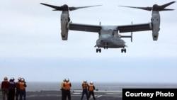2013年美日聯合軍演中,美軍魚鷹機首降日本戰艦(資料圖片,美國軍方提供)