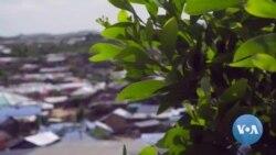 Rohingya Broadcast 01.01.2020