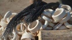 Moçambique perde terreno na defesa da fauna bravia 3:00