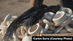 Conservação da fauna bravia tem custos elevados