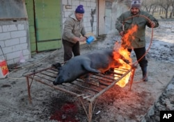 A man uses a gas burner to clean the skin of a a freshly slaughtered pig of hair in Dambu, Romania, Dec. 8, 2016. Romanians will vote in parliamentary elections on Dec. 11.