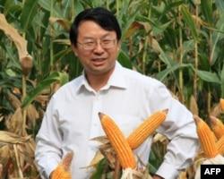 中国农业大学张福锁博士
