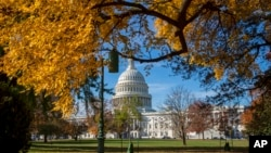 FILE - The U.S. Capitol is framed by colorful autumn leaves in Washington, D.C., November 8, 2018. (AP Photo/J. Scott Applewhite)