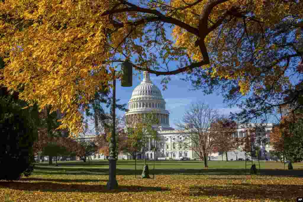 가을 정취가 느껴지는 미국 워싱턴의 연방 의사당. 최근 치러진 중간선거에서 민주당이 8년만에 하원 다수당을 탈환하고, 공화당은 상원 다수당을 수성했다.