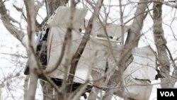 Una parte de la avioneta quedó en lo alto de un árbol después de que se estrellara en una carretera en Harding, Nueva Jersey. Cinco personas que viajaban en el aparato murieron y ninguna en tierra.