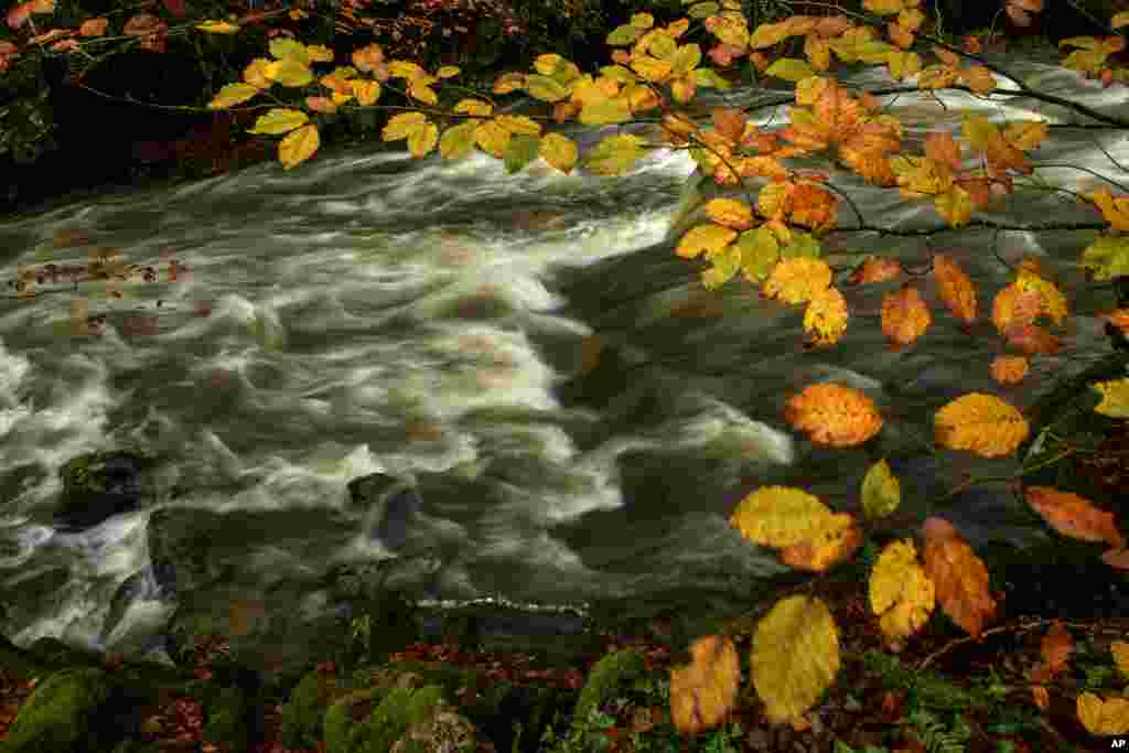 The Irati River flows rapidly after the rainfall during an autumn day, near the small Pyrenees town of Arce, Spain.