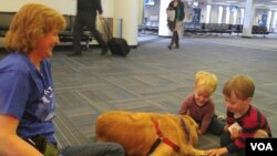 Dua orang anak kecil bermain dengan seekor anjing terapi di bandara Dulles, di pinggiran Washington DC.