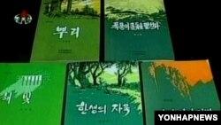 북한 문학예술출판사의 도서들. (자료사진)