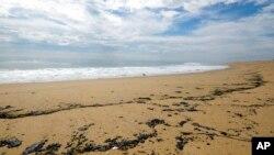 泄露的石油被冲到加州纽波特比奇的海滩上。(2021年10月4日)
