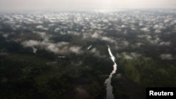 Vue aérienne de la forêt de Garamba dans le Haut Uele, nord-est de la RDC, 21 février 2009.