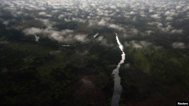 An aerial view of Garamba forest in Haute Uele region of northeastern Congo. (file photo)