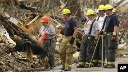 救援队员和搜寻狗5月28日在密苏里州乔普林市龙卷风灾区搜寻幸存者